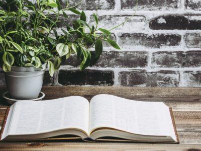 読書と生活について